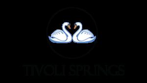 logo_springs-300x169